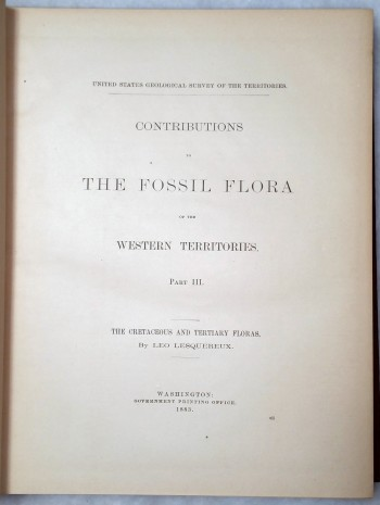 Image for Contributions to the Fossil Flora of the Western Territories. Part III: The Cretaceous and Tertiary Floras (Report of the United States Geological Survey of the Territories, Volume VIII)