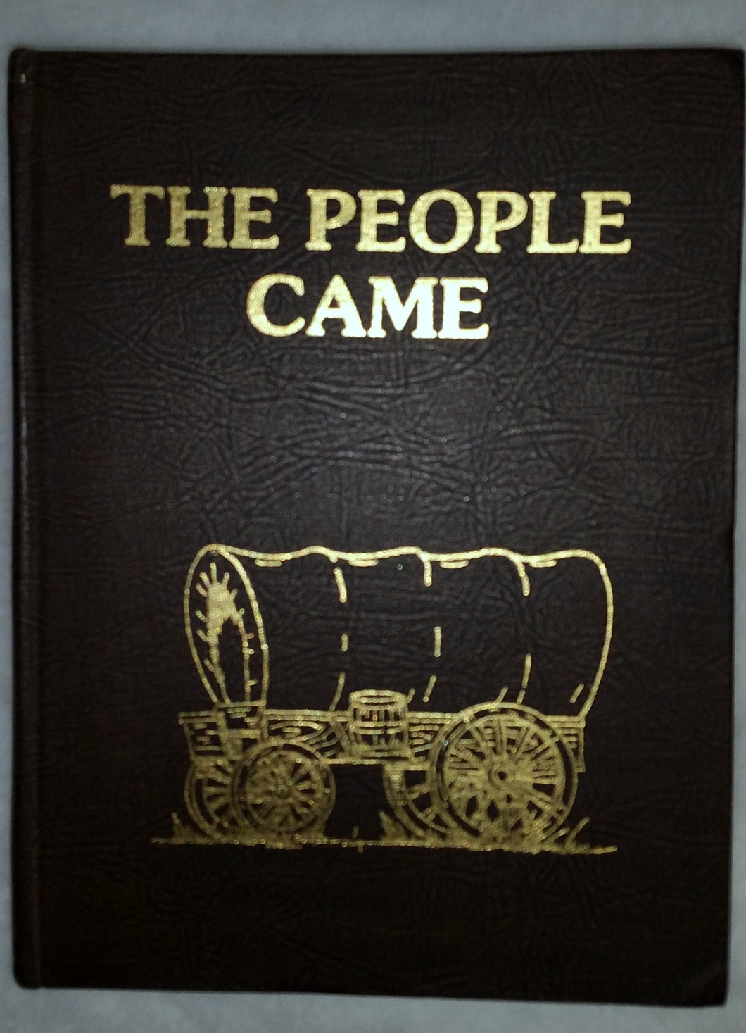 Image for The People Came  [History of Osborne County, Vol. I]