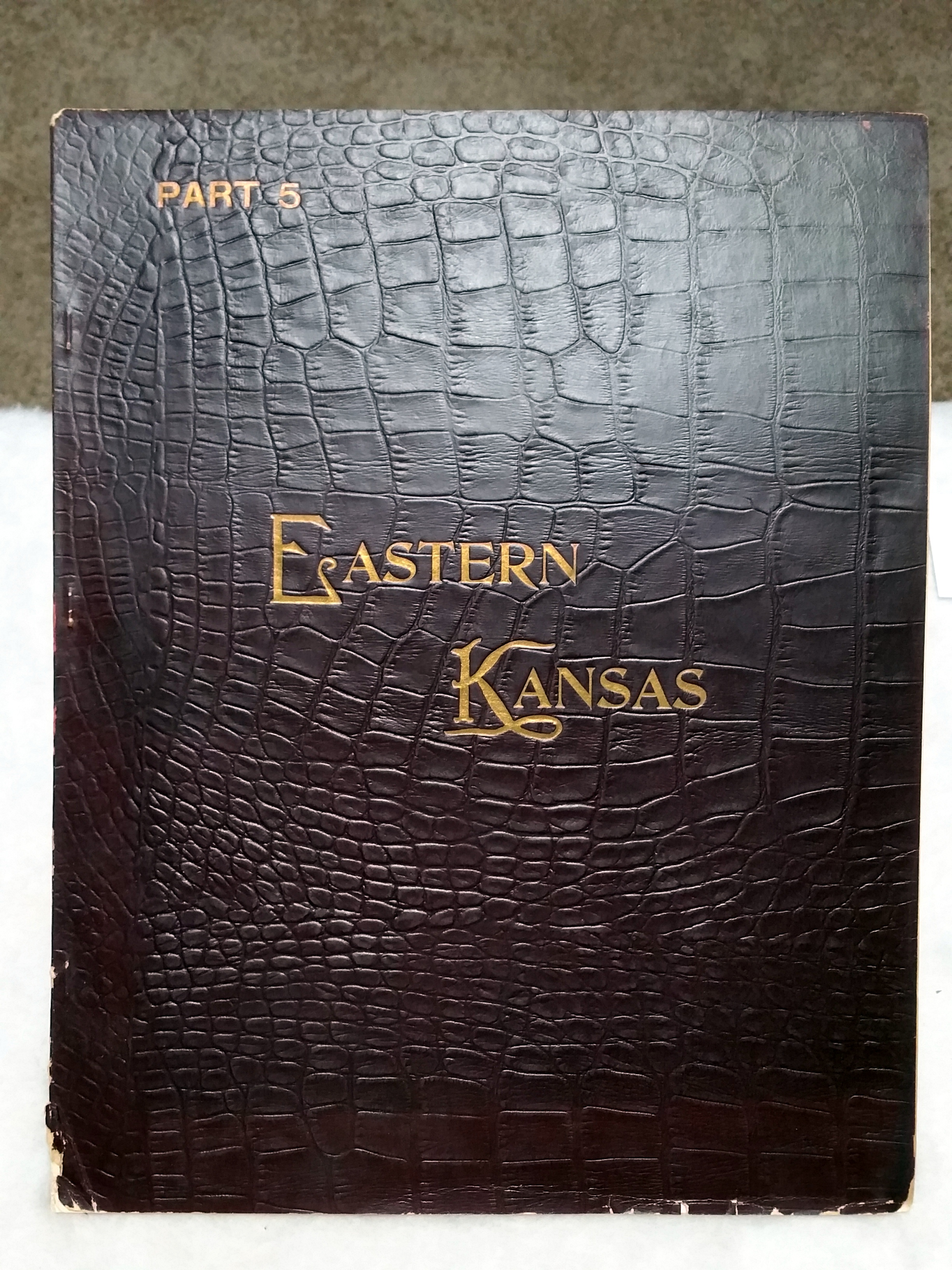 Image for Art Work on Eastern Kansas, Part 5