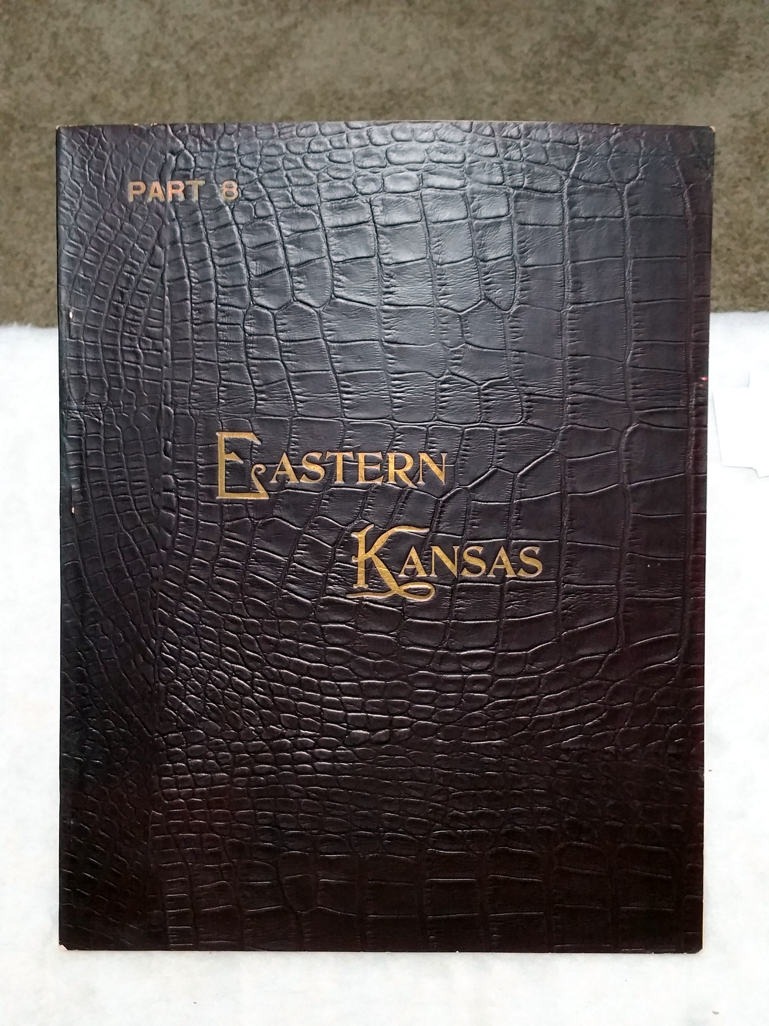 Image for Art Work on Eastern Kansas, Part 8