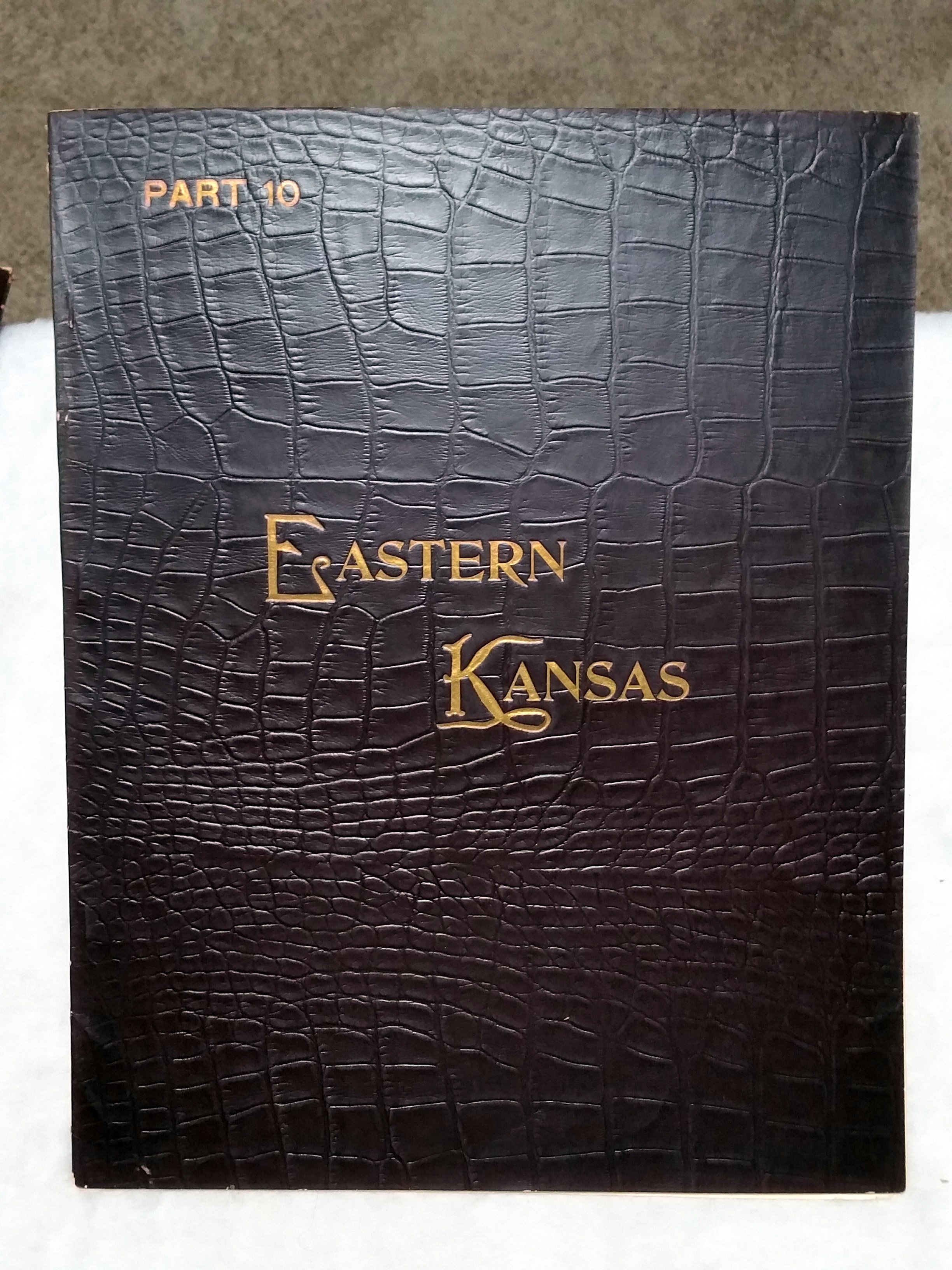 Image for Art Work on Eastern Kansas, Part 10