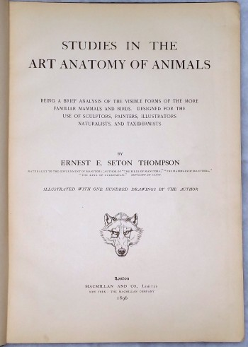 Image for Studies in the Art of Anatomy of Animals