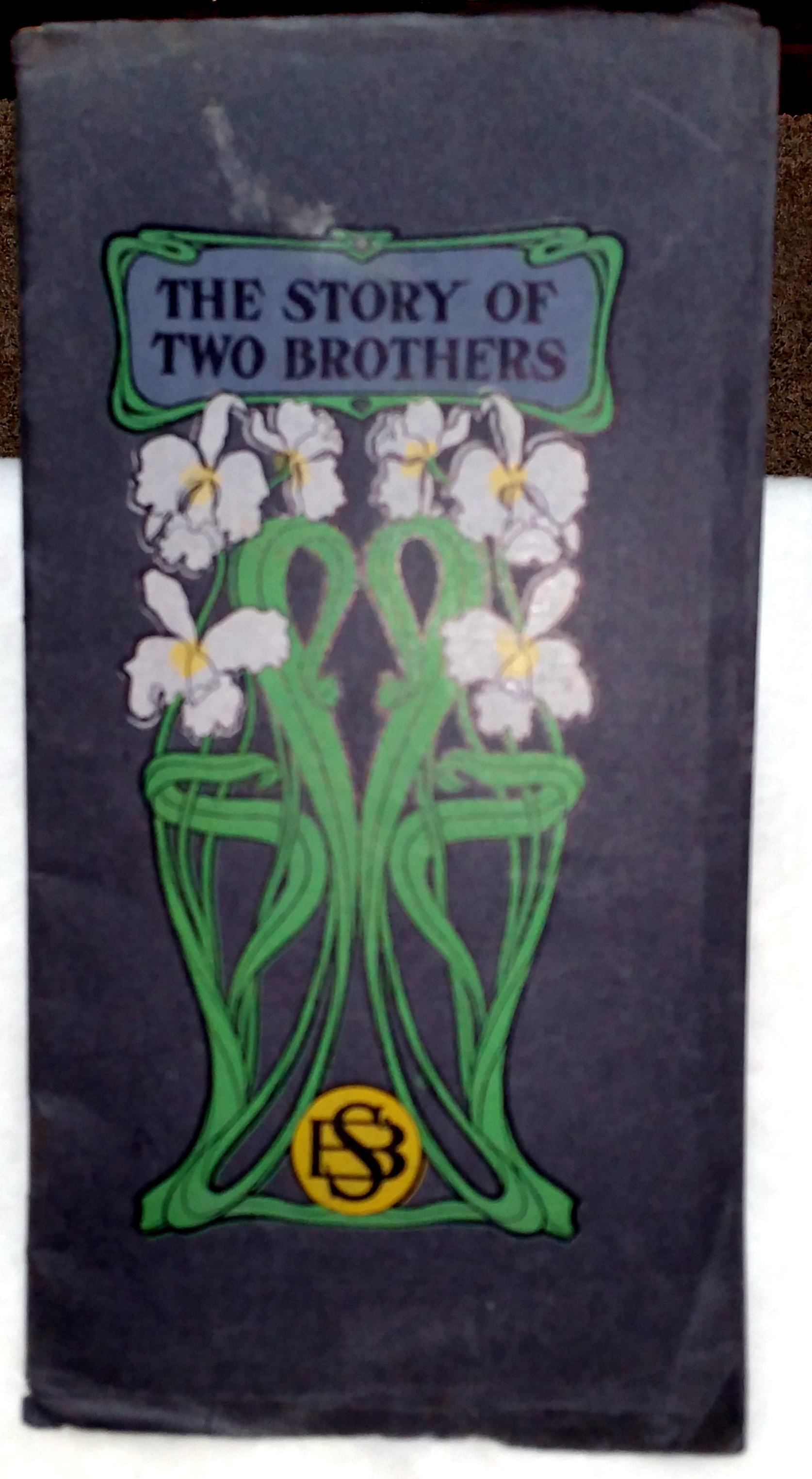Image for The Story of Two Brothers
