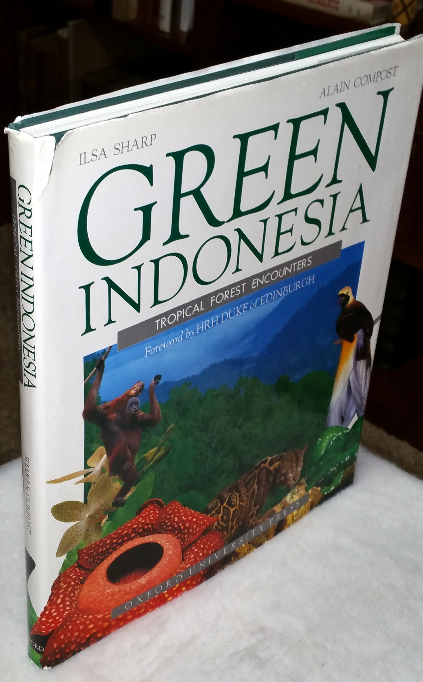 Image for Green Indonesia:  Tropical Forest Encounters