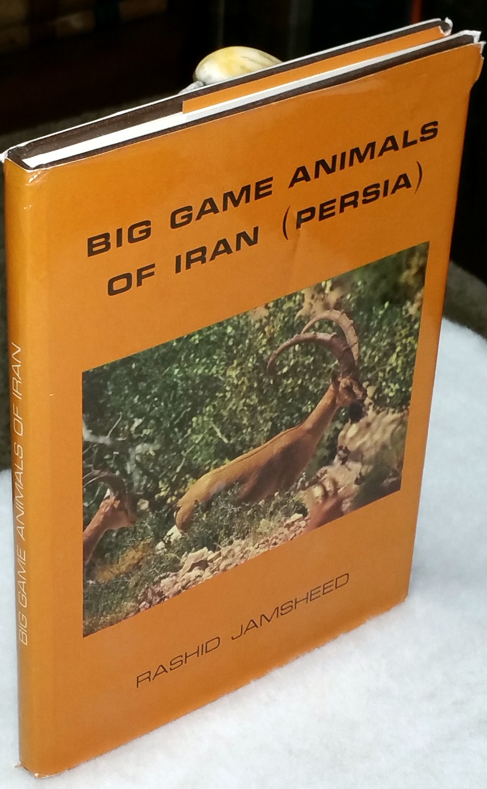 Image for Big Game Animals of Iran (Persia)