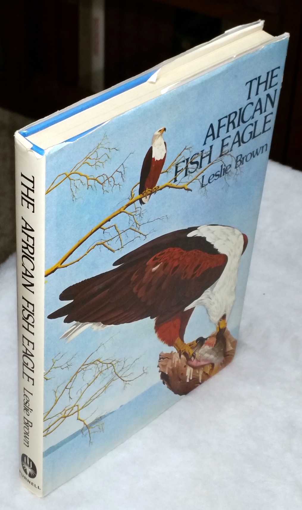 Image for The African Fish Eagle