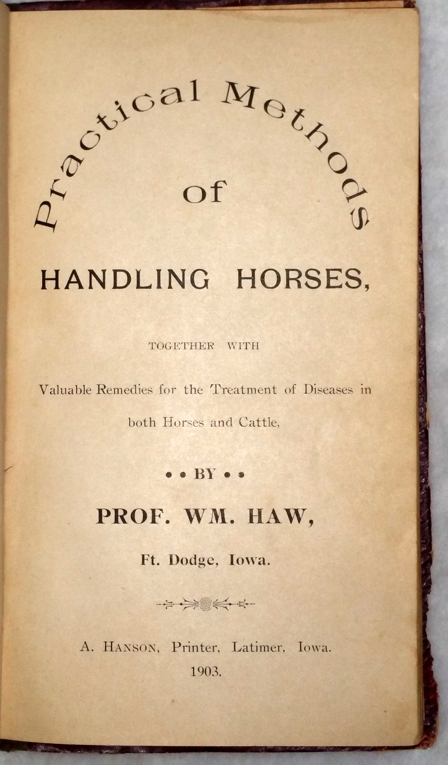 Image for Practical Methods of Handling Horses, Together with Valuable Remedies for the Treatment of Diseases in Both Horses and Cattle
