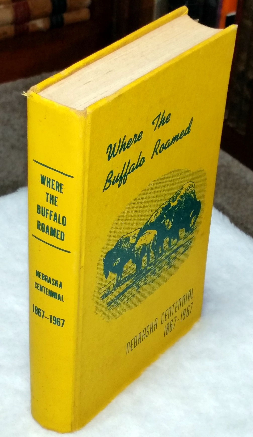 Image for Where the Buffalo Roamed:  Stories of Early Days in Buffalo County, Nebraska