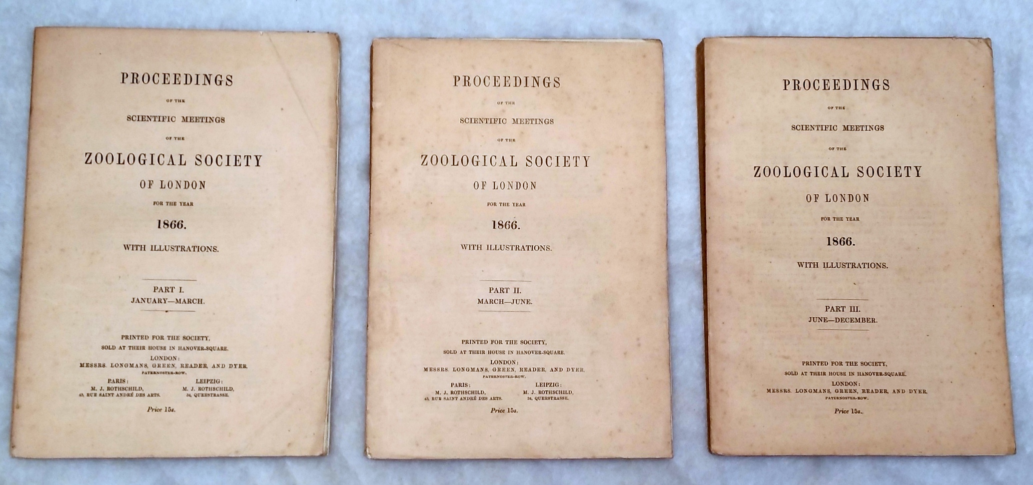 Image for Proceedings of the Scientific Meetings of the Zoological Society of London for the Year 1866. Part I, II, III, January-December