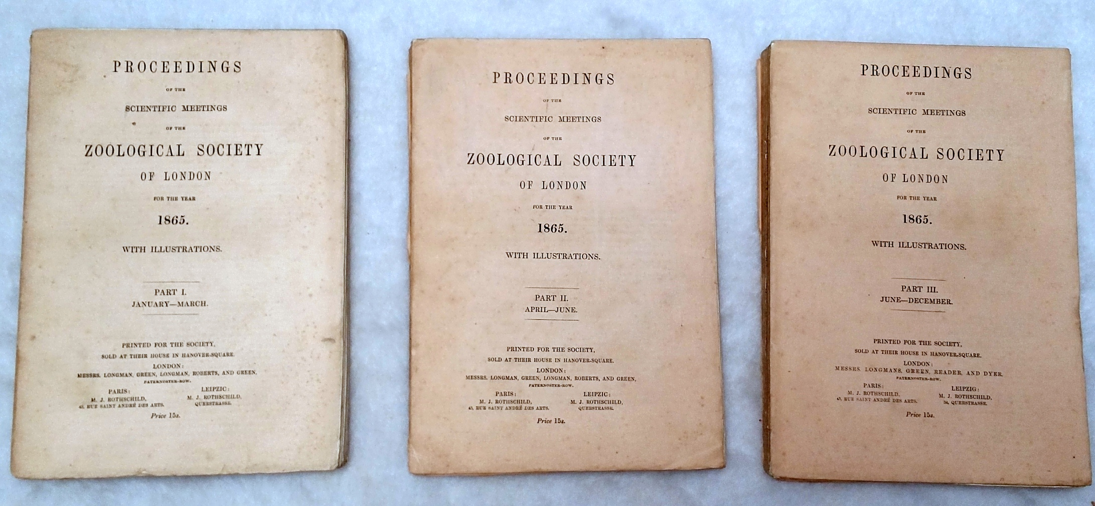 Image for Proceedings of the Scientific Meetings of the Zoological Society of London for the Year 1865. Part I, II, III, January-December