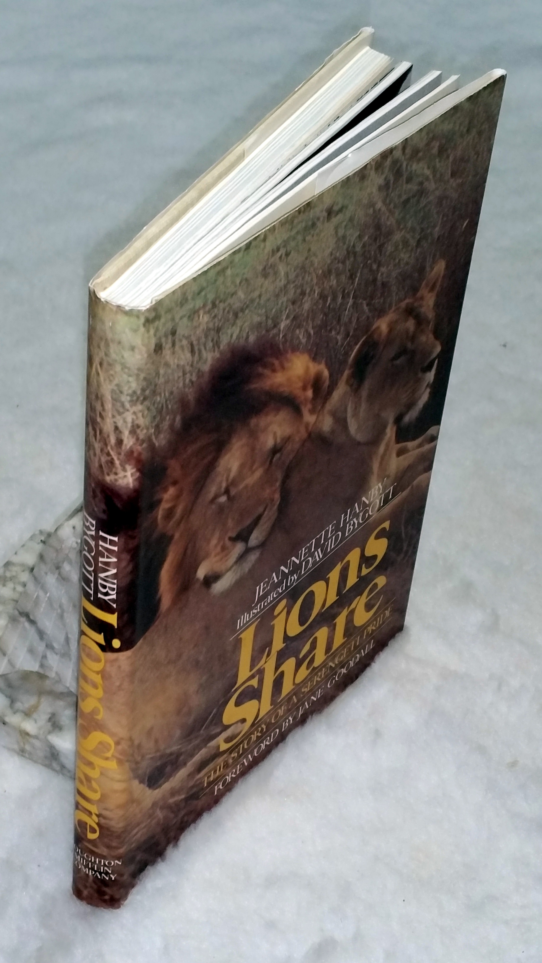 Image for Lions Share:  The Story of a Serengeti Pride