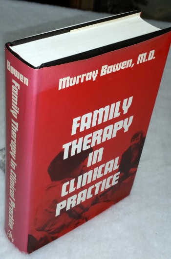 Image for Family Therapy in Clinical Practice
