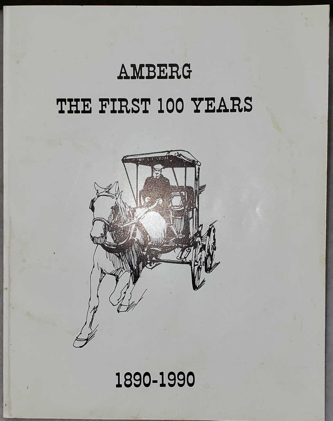 Image for Amberg:  The First 100 Years, 1890-1990