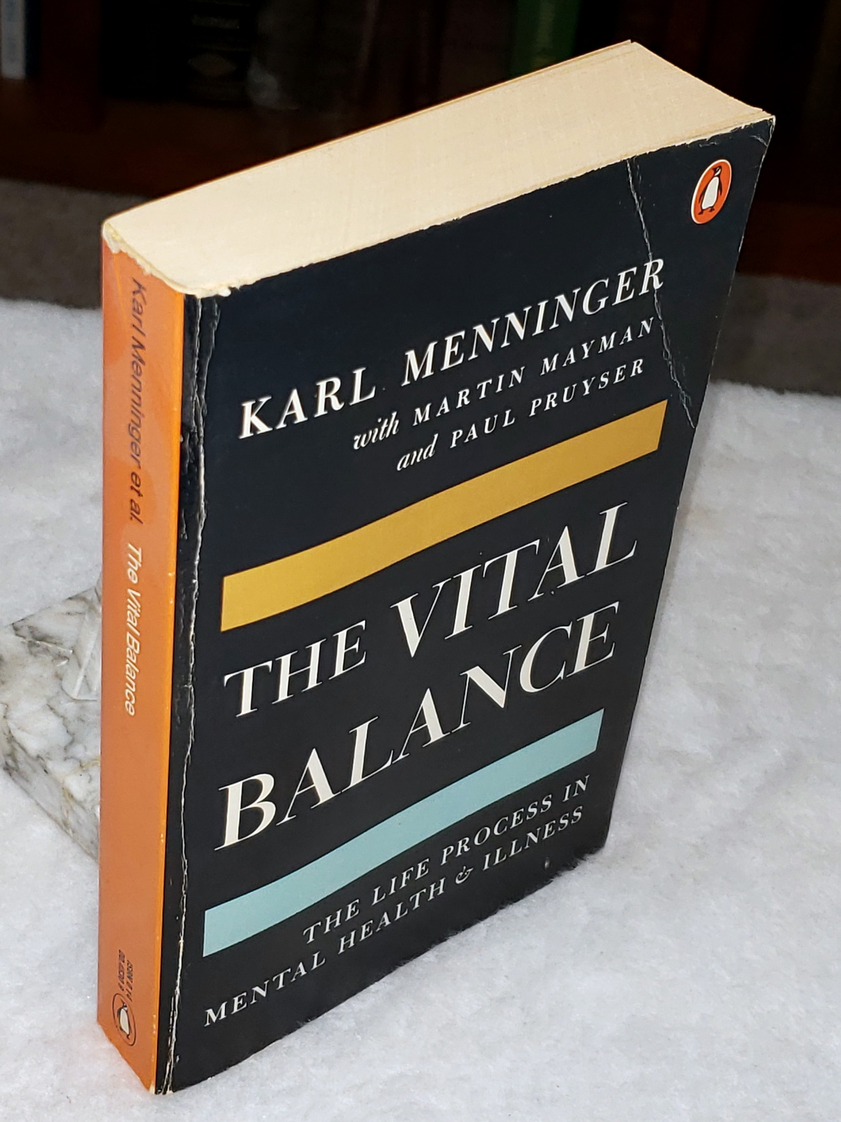 Image for The Vital Balance:  The Life Process In Mental Health and Illness