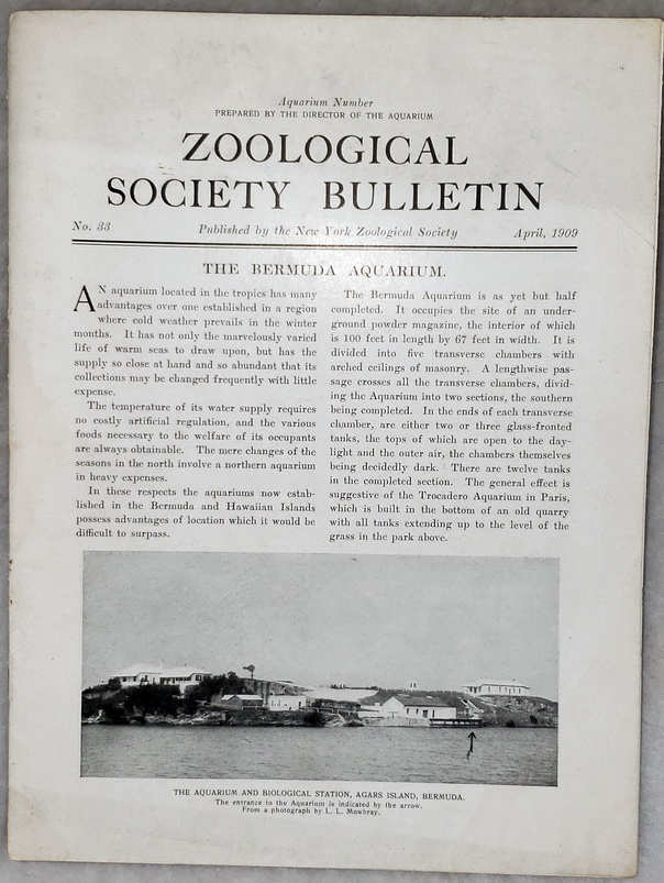 Image for Zoological Society Bulletin, No. 33, April 1909 (Aquarium Number)