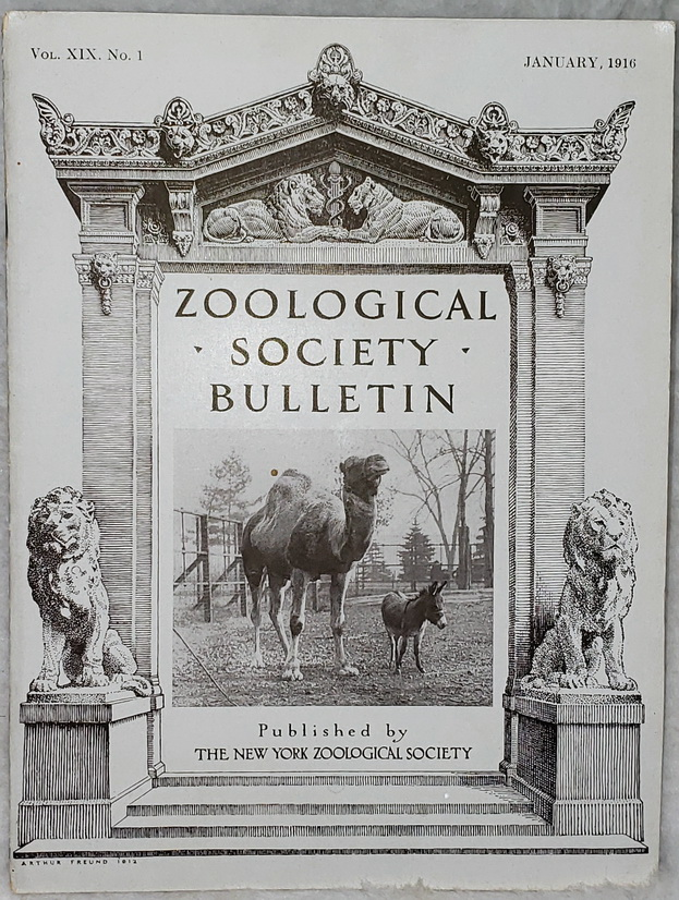 Image for Zoological Society Bulletin, Vol. XIX, No. 1, January, 1916