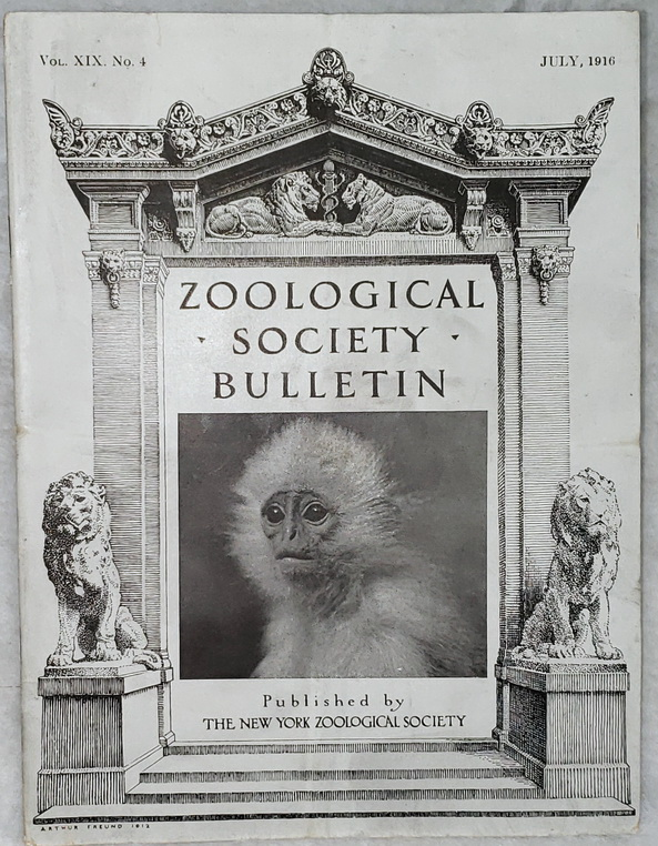 Image for Zoological Society Bulletin, Vol. XIX, No. 4, July, 1916