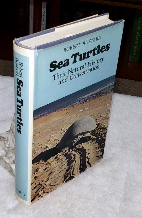 Image for Sea Turtles:  Natural History and Conservation