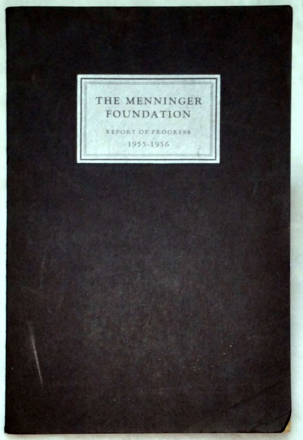 Image for The Menninger Foundation, Report of Progress for the Year from July 1, 1955 to June 30, 1956