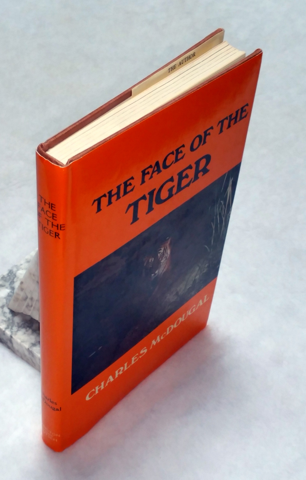 Image for The Face of the Tiger