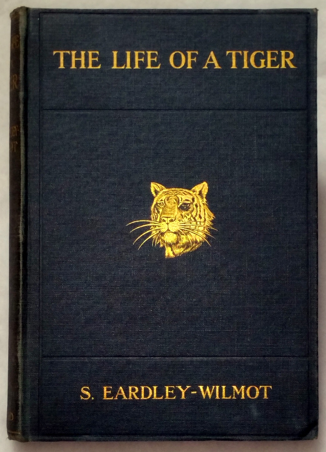 Image for The Life of a Tiger